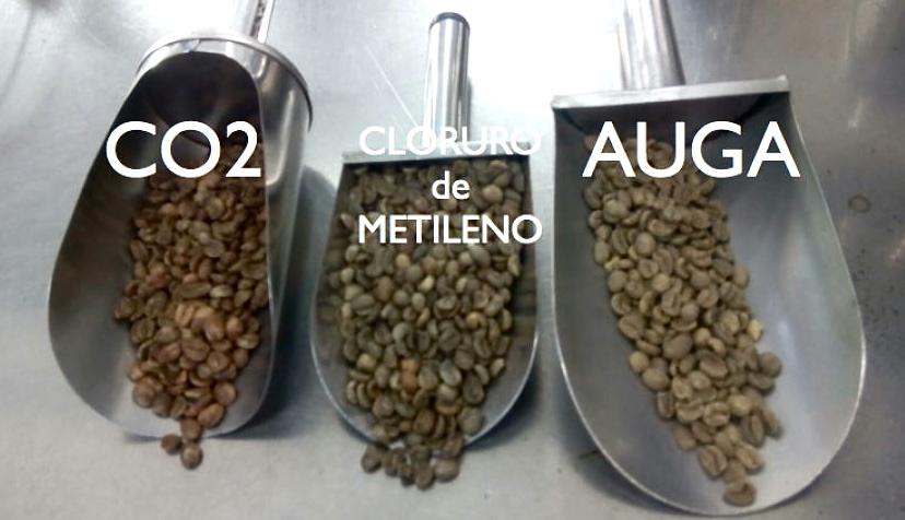 Resultados dos procesos de eliminación da  cafeína por CO2,  Cloruro de  metileno, e auga
